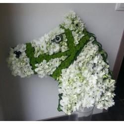 Mousse florale Tete de Cheval