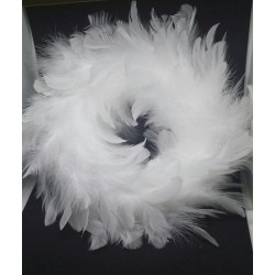 Couronne plumes