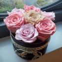 Boite de 7 Roses lyophilisée L