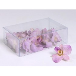 Fleuron de Dendrobium lyophilisé
